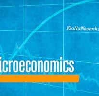 Микроэкономический уровень анализа