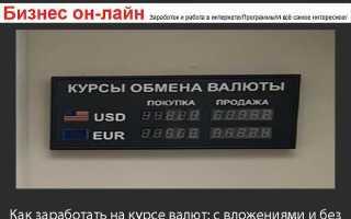 Заработок на курсе валют в интернете