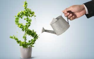 Эффект мультипликатора инвестиций