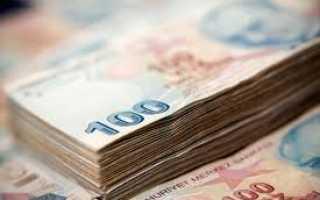 Инвестиции затраты только на прирост капитала