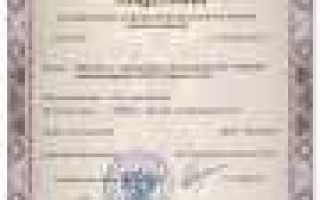 Страхование гражданской ответственности таможенного представителя