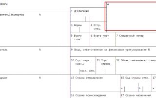 Регистрационный номер таможенной декларации где взять