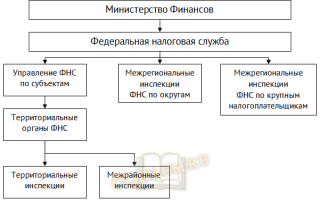 Система органов государственной налоговой службы