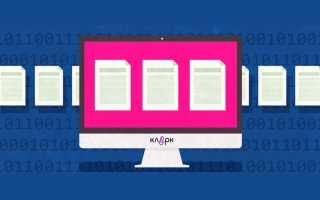Разработка программного обеспечения бухгалтерский учет